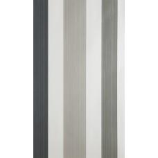 Chromatic Stripe BP 4201
