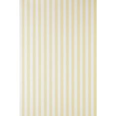 Closet Stripe ST 356