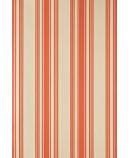 Tented Stripe ST 1351