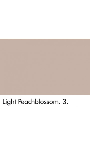 ŠVIESUS PERSIKO ŽIEDAS 3 - LIGHT PEACHBLOSSOM 3