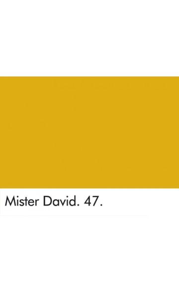 PONAS DEIVIDAS 47 - MISTER DAVID 47