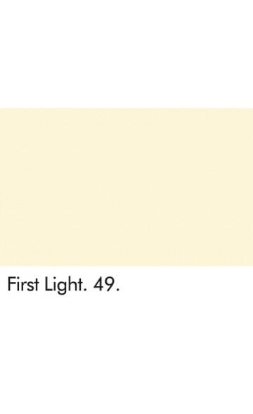 PIRMOJI ŠVIESA 49 - FIRST LIGHT 49