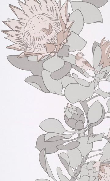 Protea Trail - Salt