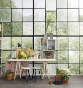 Factory Window R14381