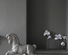 Dažų  interjero galerija